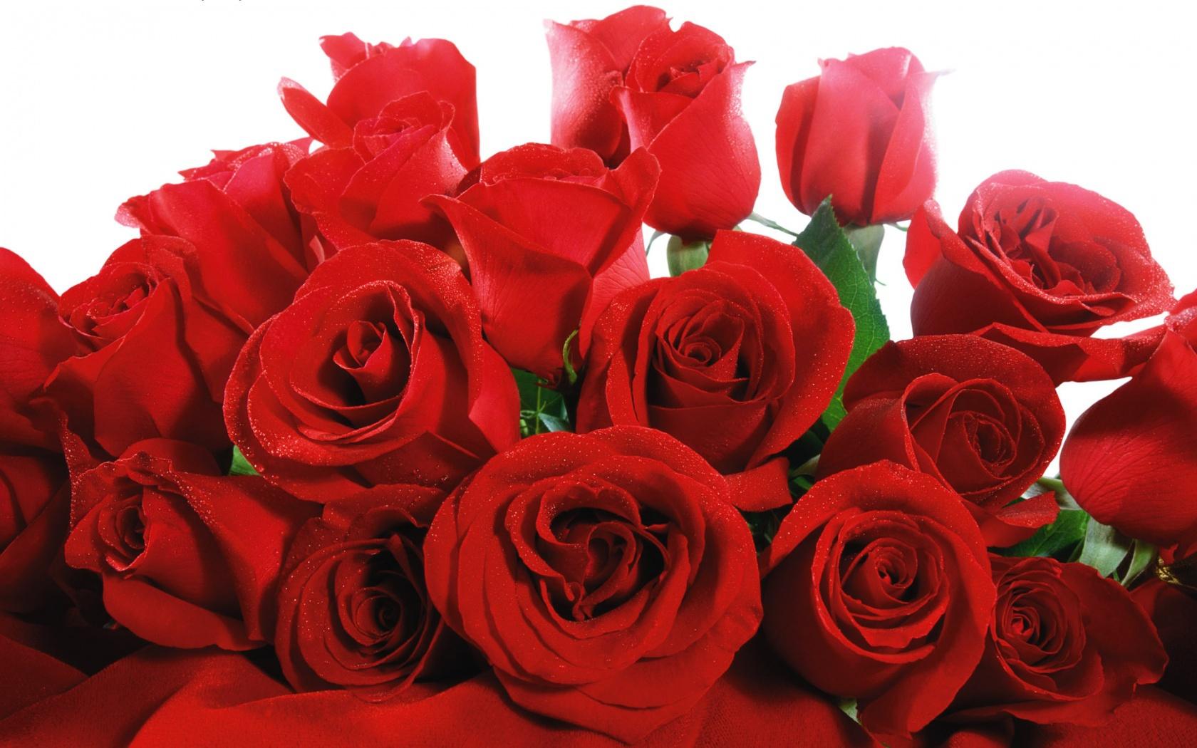Що подарувати дівчині на день Святого Валентина, квіти