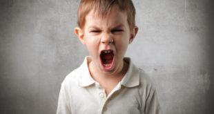 Почему дети грубят?